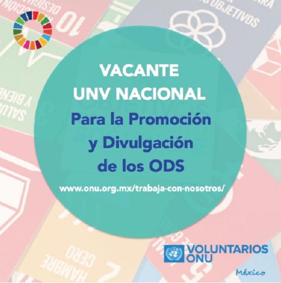 """Vacante """"UNV Nacional"""" para la Promoción y Divulgación de los ODS"""