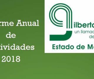 Informe Anual de Actividades 2018 de la Asociación Gilberto, A.C